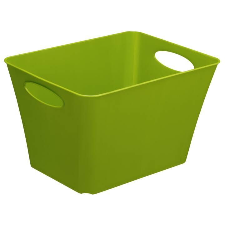 ROTHO Storage Box Box Living Box