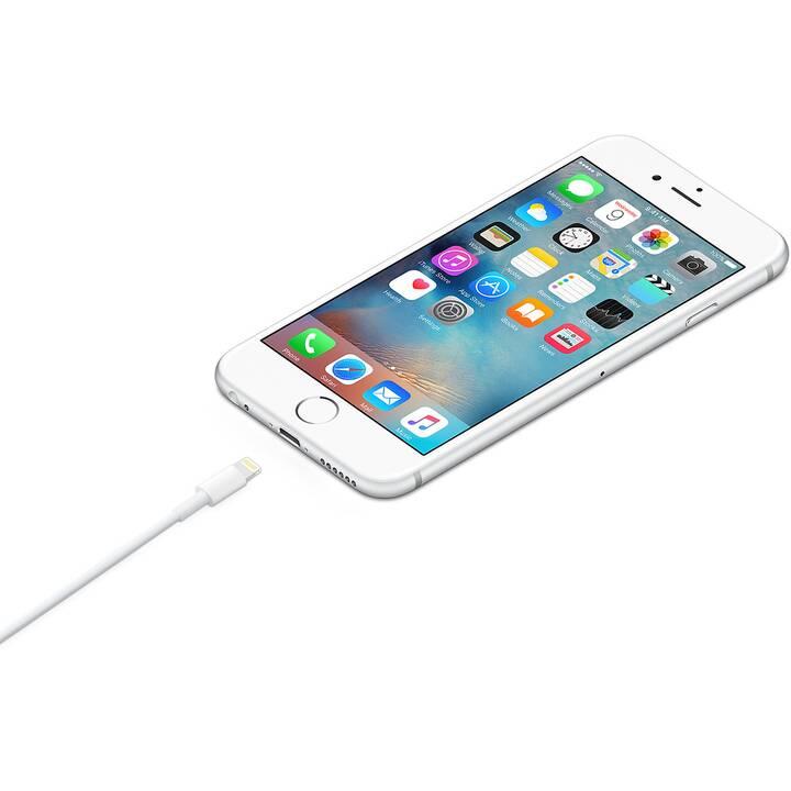 APPLE Lightning Kabel (Lightning, USB Typ-A, 1 m)