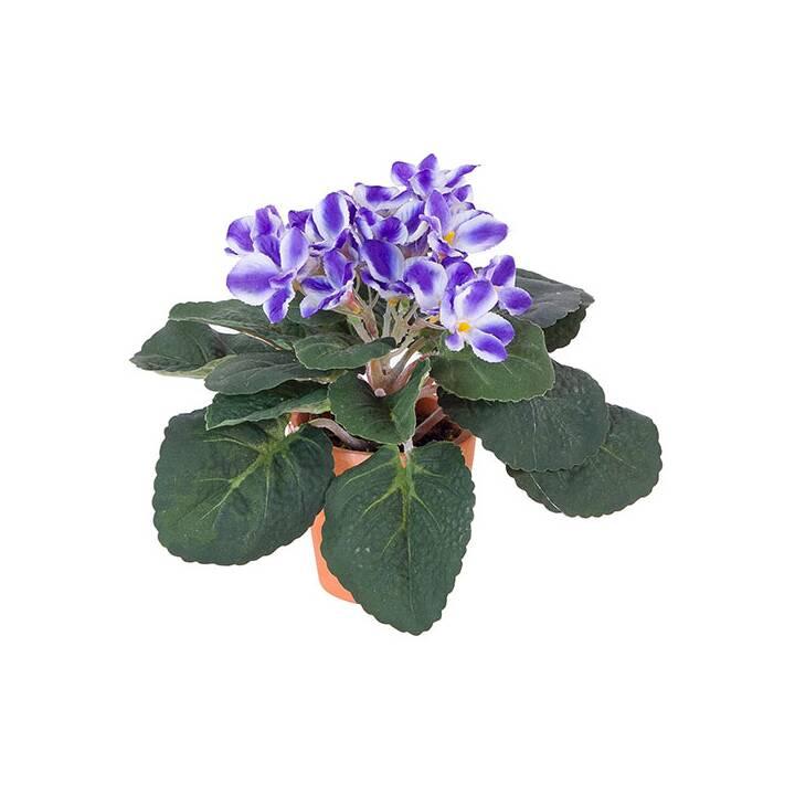 LUWATEX Saintpaulia Kunstpflanze (Blau)