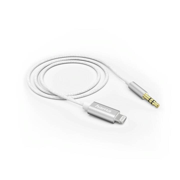 HAMA Câble adapteur (1 m)