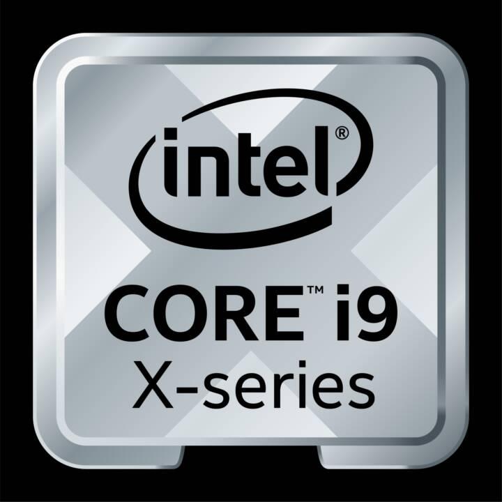 INTEL Core i9 9960X X-series / 3.1 GHz