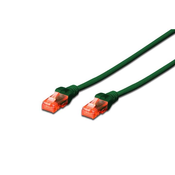 ASSMANN CAT 6 U-UTP Câble réseau (RJ-45, 0.5 m)