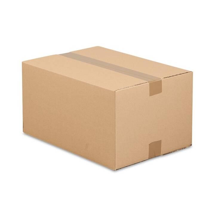 ANTALIS Versandbox (34 cm x 24 cm x 20 cm, 25 Stück)