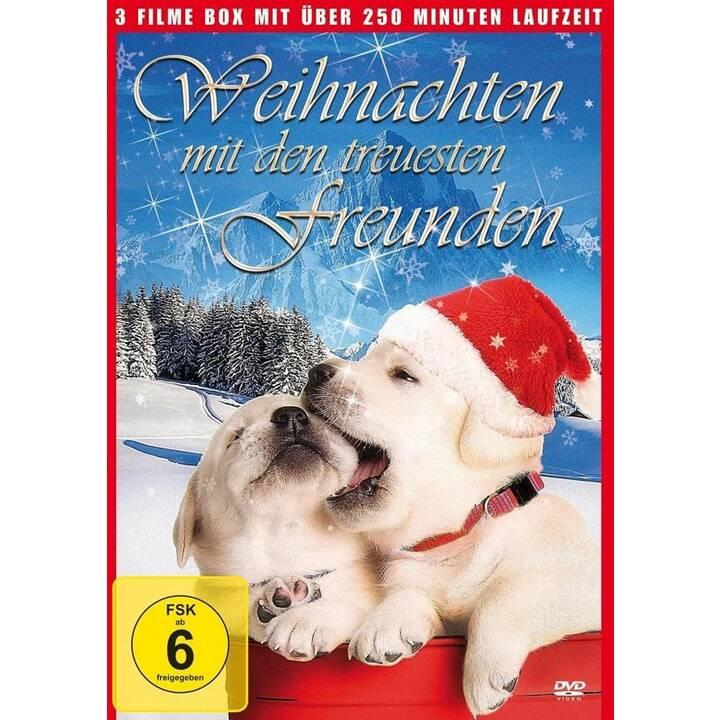 Weihnachten mit den treuesten Freunden - Kleine Helden grosse Wildnis  (DE)