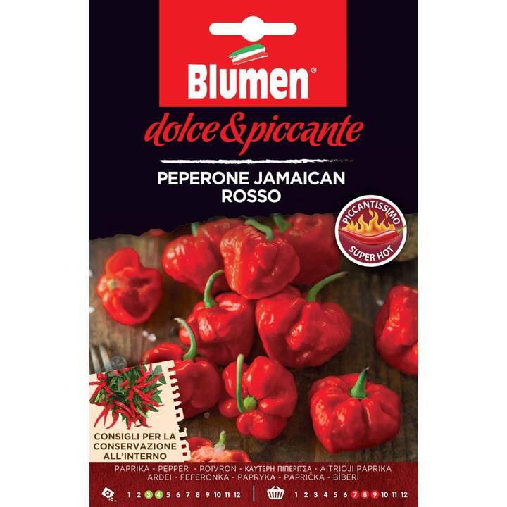 BLUMEN Poivron Jamaican (0.08 g)