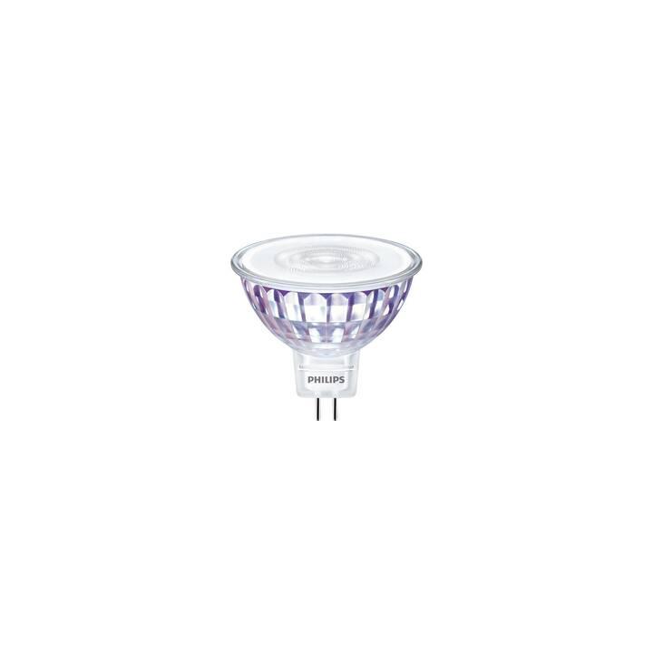 PHILIPS Ampoule LED (GU5.3, 5 W)