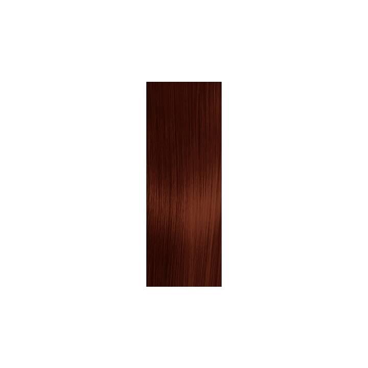 SCHWARZKOPF Essensity (5.68, Light Brown Auburn Red)