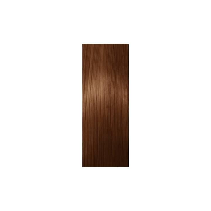 SCHWARZKOPF Igora Color10 (5.7, Light Brown Copper)