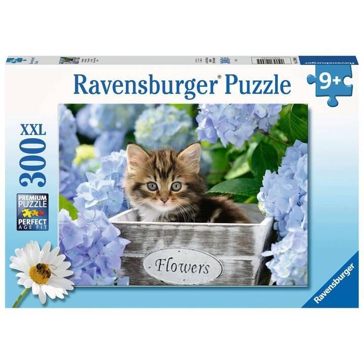 RAVENSBURGER Tortoiseshell Kitty (1 x 300 Stk, Puzzle 2D)