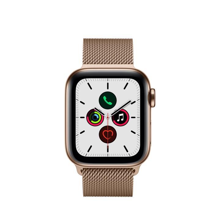 APPLE Watch Series 5 GPS + LTE Gold/Gold (40 mm, Edelstahl, Edelstahl)