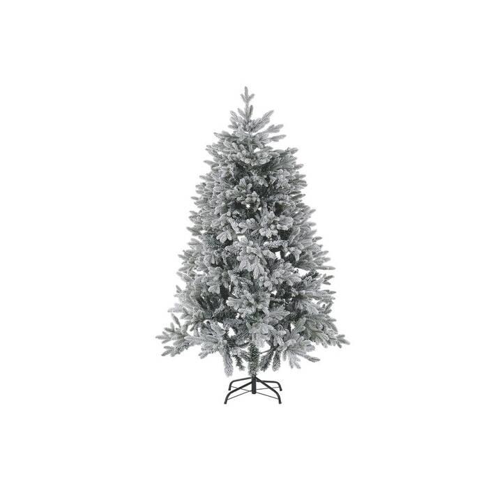 BELIANI Albero di Natale Foraker (1 pezzo)
