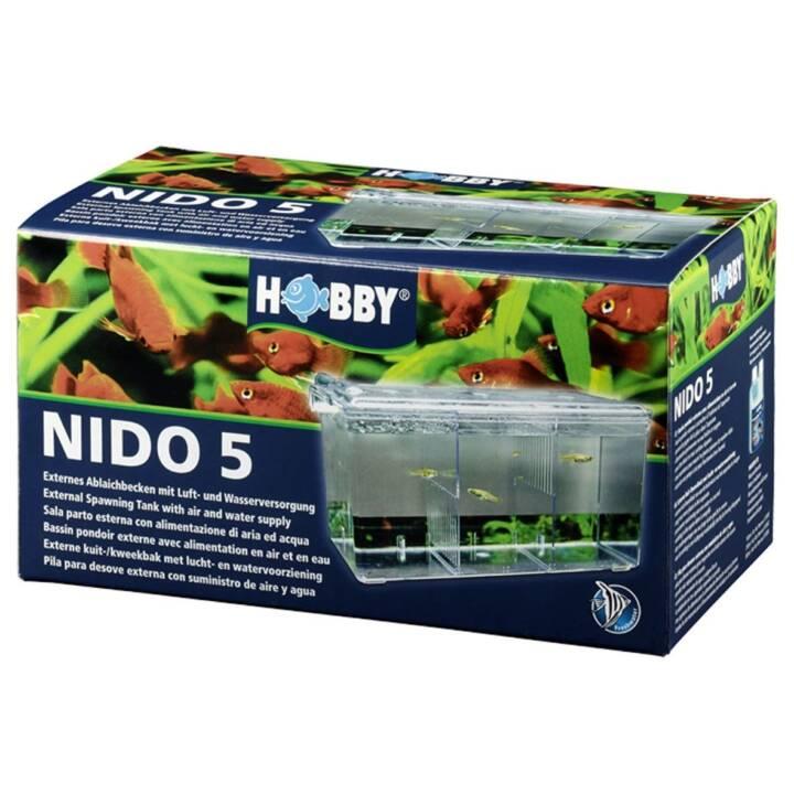 HOBBY Scatola di allevamento Nido 5