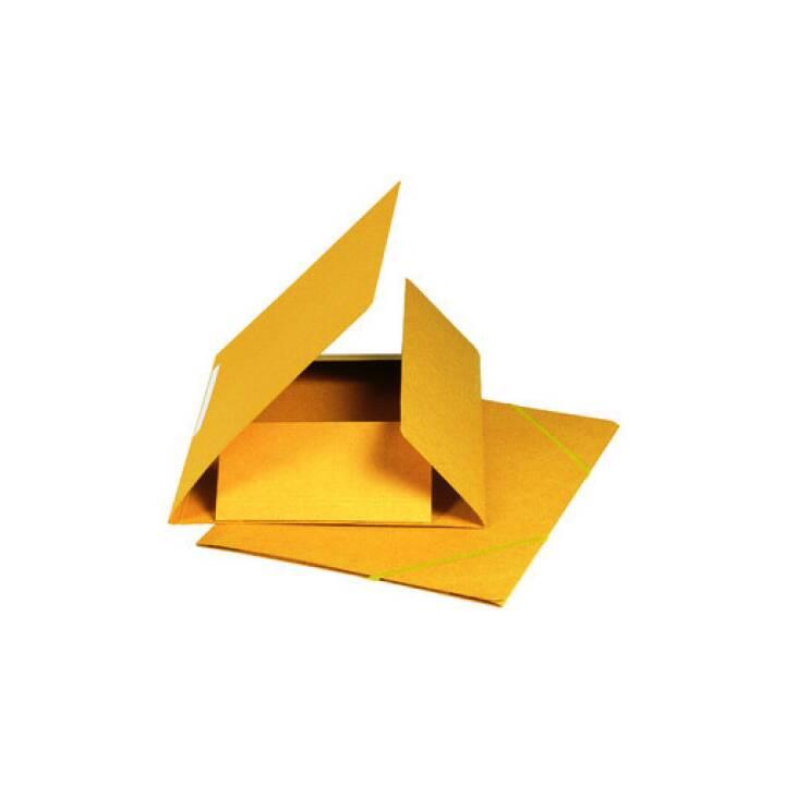 Cartella elastica BIELLA A4 giallo, 590gm2 220 fogli