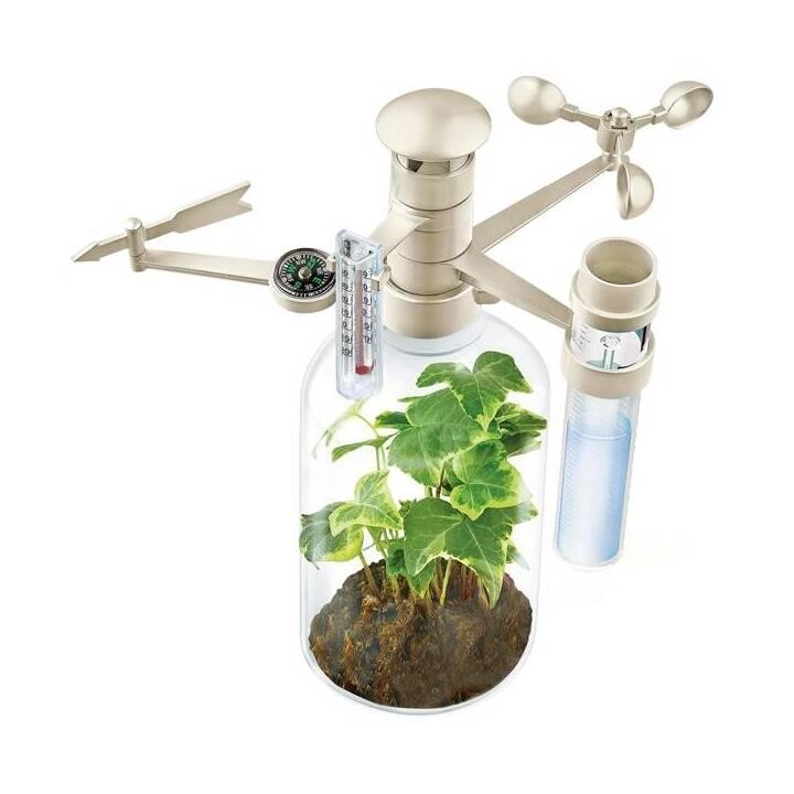 4M Green Science Experimentierkasten (Naturwissenschaft)