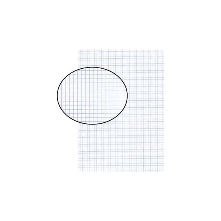 BIELLA Foglio di input (A5, Quadrettato, 100 foglio)