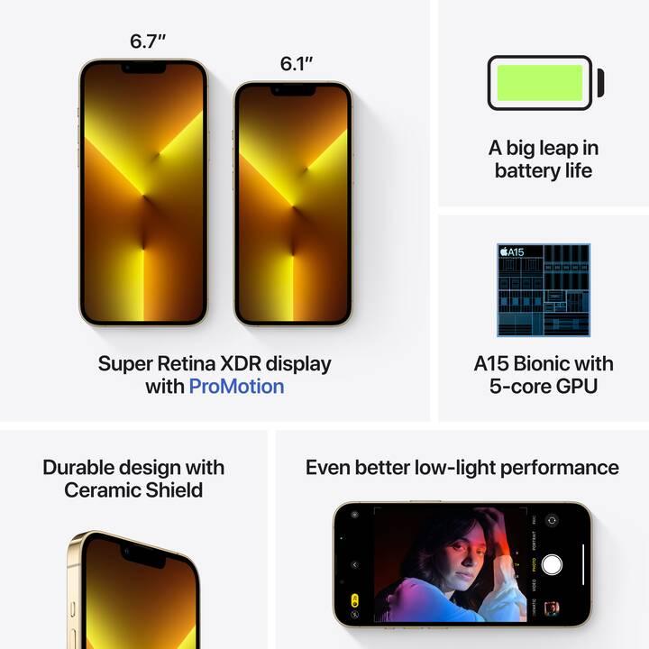 "APPLE iPhone 13 Pro (5G, 128 GB, 6.1"", 12 MP, Gold)"