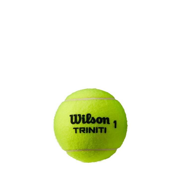 WILSON Palle da tennis Triniti