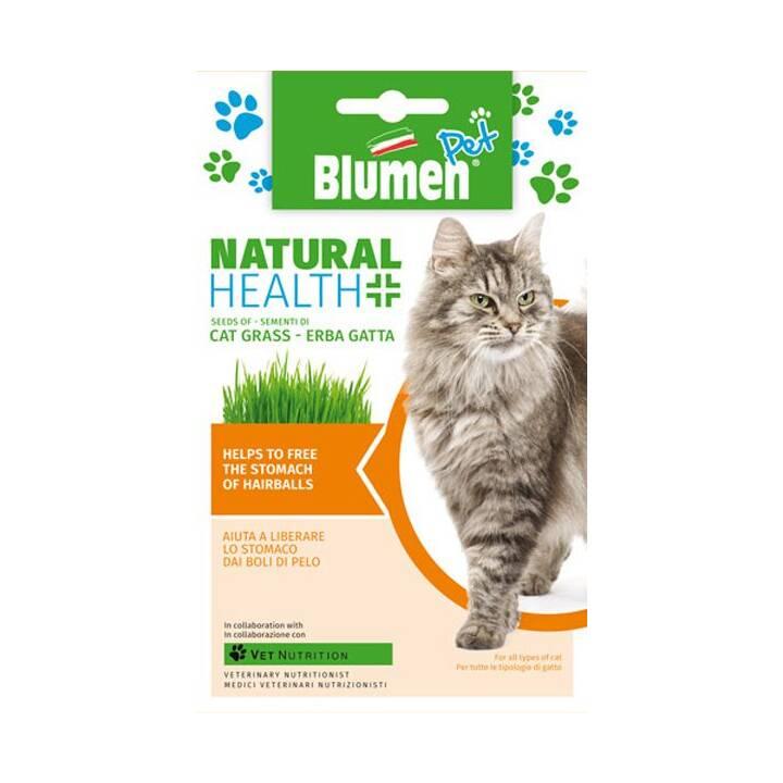 BLUMEN Herbe à chat  (47.5 g)