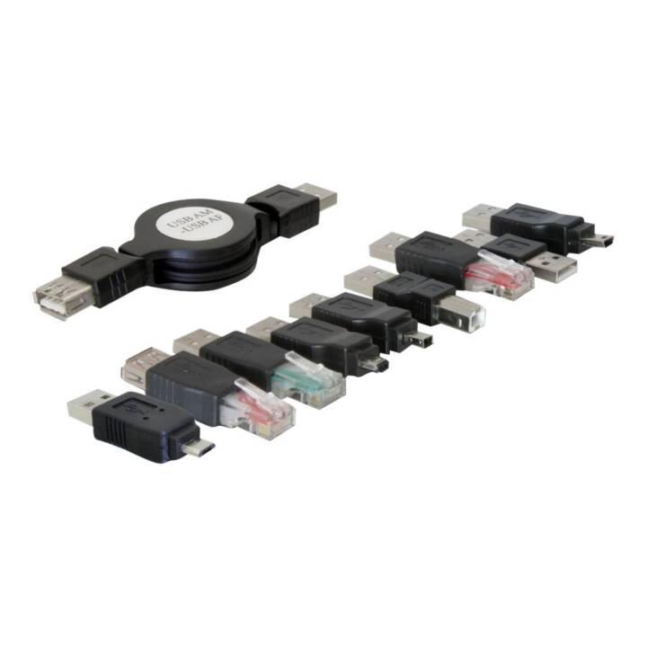 Kit adattatore USB DELOCK - Kit adattatore USB
