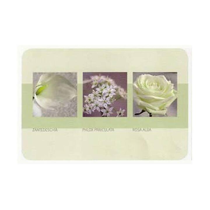 HORNSCHUCH Set de table Opal Romance (1 Stk, Polychlorure de vinyle (PVC), Blanc)