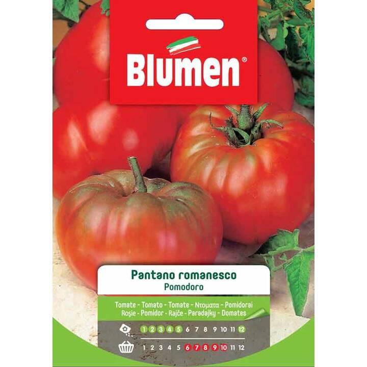 BLUMEN Pomodoro Pantano Romanesco (2 g)