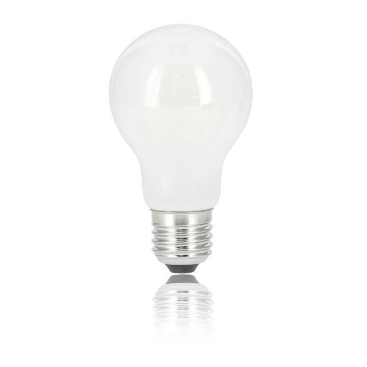 XAVAX Ampoule LED (E27, 6.5 W)