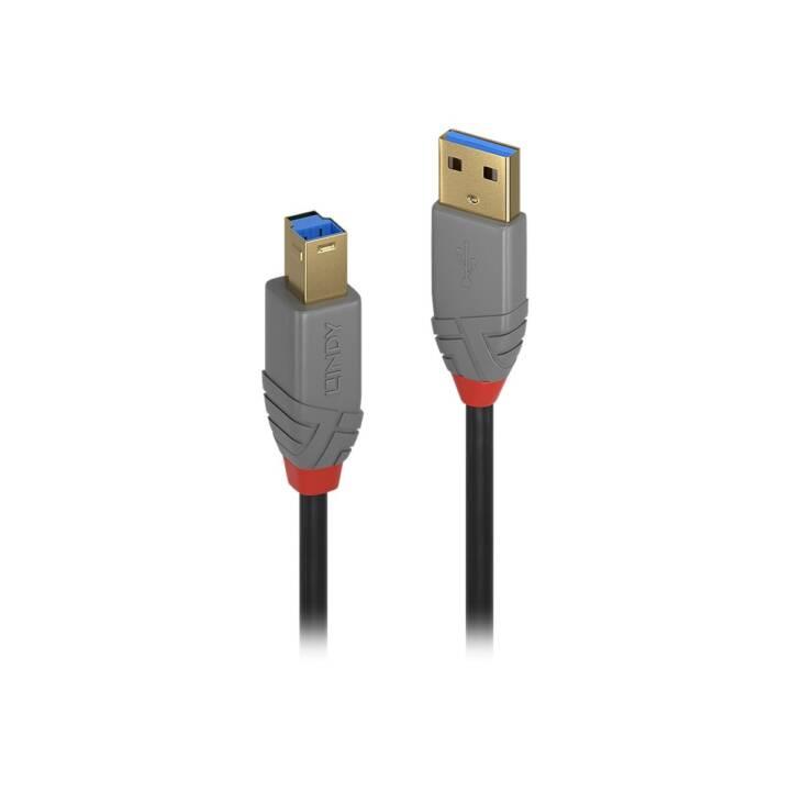 LINDY 36740 Câble USB (USB 3.0 Type-B, USB 3.0 Type-A, 50 cm)