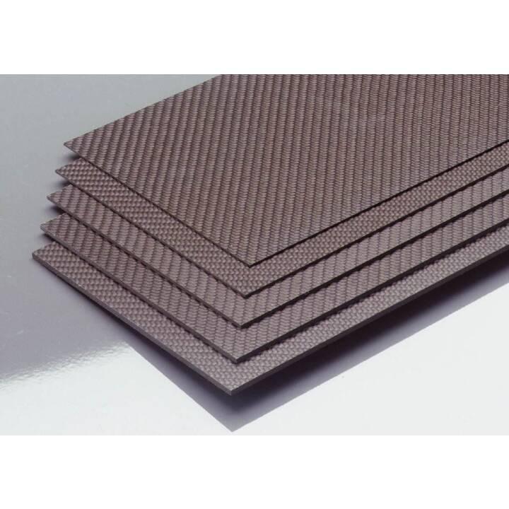 EPOWER Carbon Platte