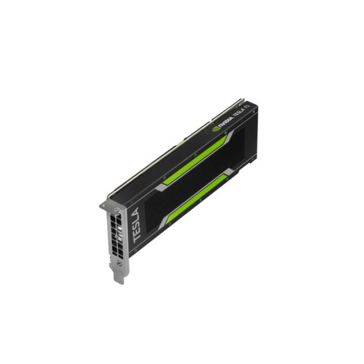 HP Q0V80A NVIDIA Tesla NVIDIA Tesla P40 (24 GB, Stazione di lavoro)