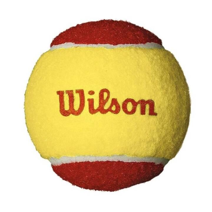 WILSON Palle da tennis Starter Red
