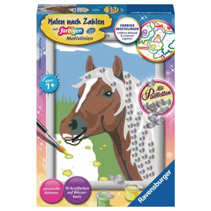 RAVENSBURGER Malen nach Zahlen Pferd mit Pailetten