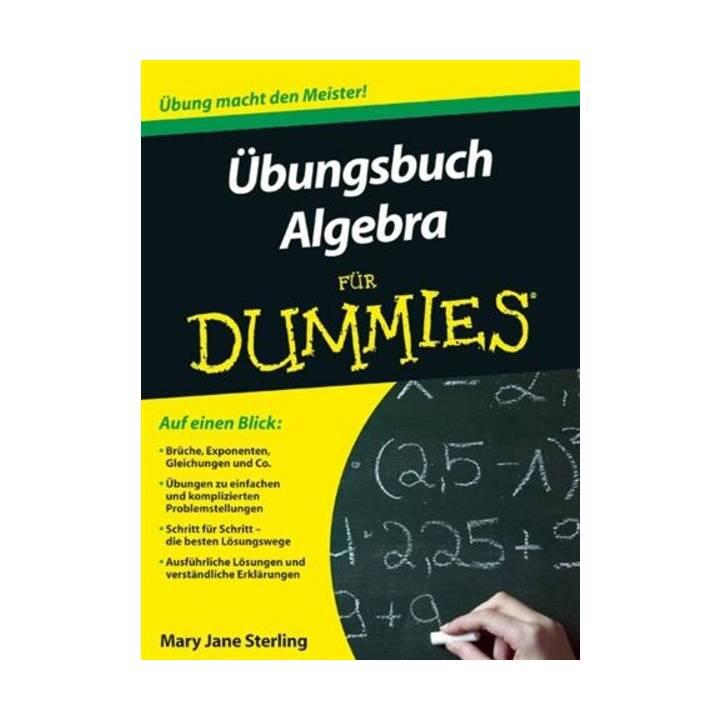 Übungsbuch Algebra