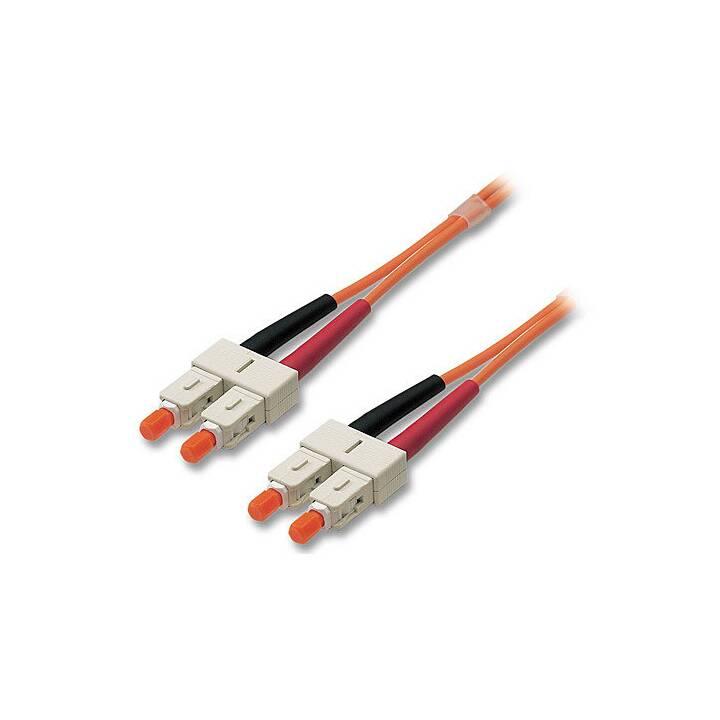 Câble patch LINDY - 2 m