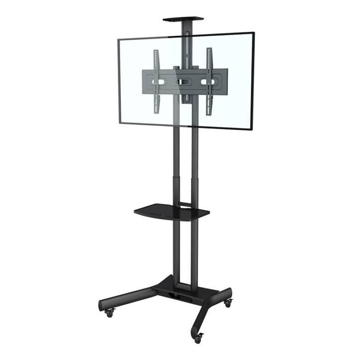 AUDIORAQ Montaggio TV M Public Floorstand Basic 2319 (Pavimento)
