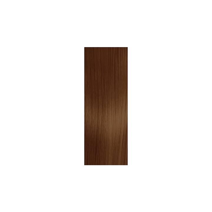 SCHWARZKOPF Essensity (6.68, Dark Blonde Auburn Red)