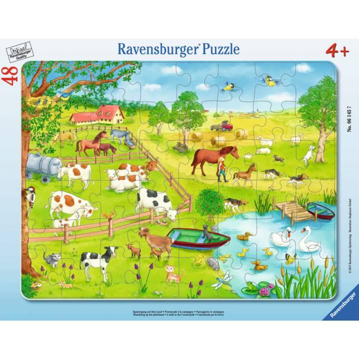 RAVENSBURGER promenade sur la campagne puzzle pour enfants