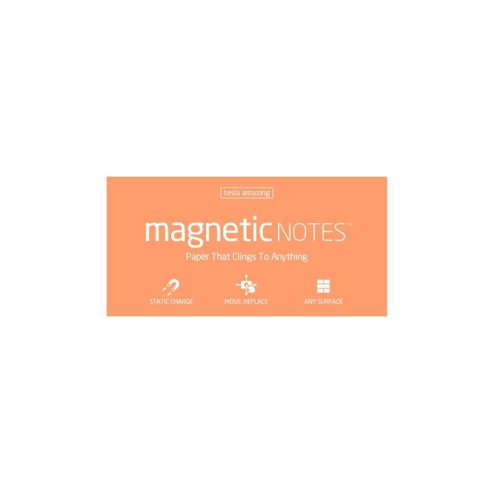 TESLA AMAZING Magnetic Notes L 200x100mm peachy 100 Blatt