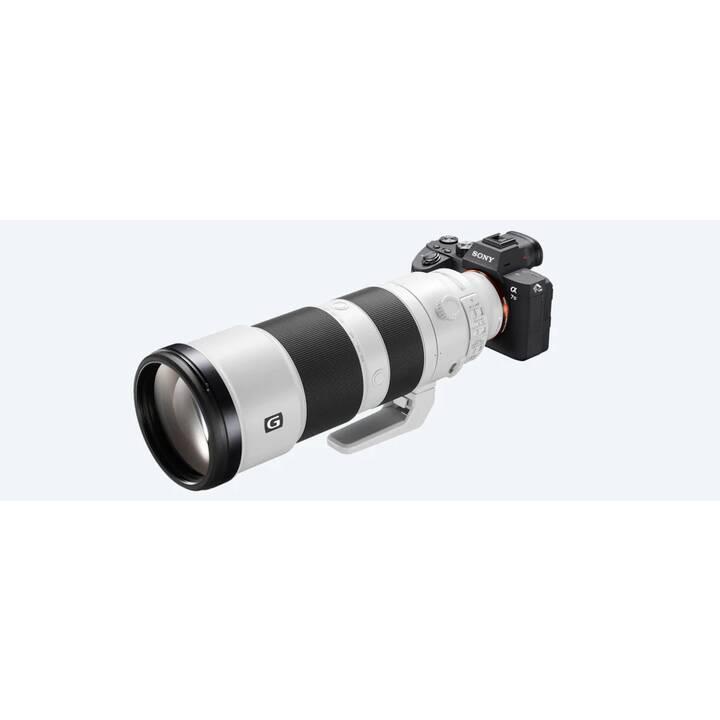 SONY FE 200–600mm f/5.6–6.3 G OSS (Import)