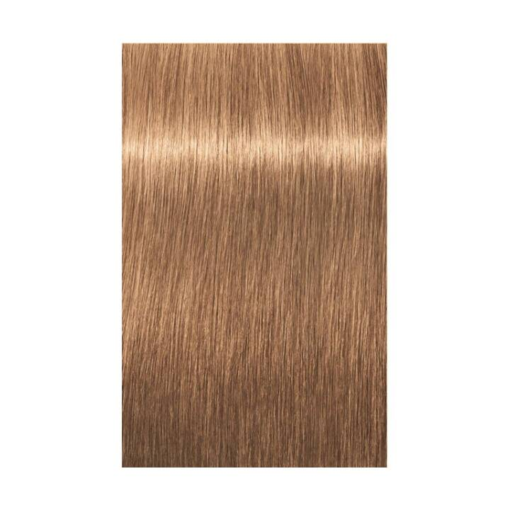 SCHWARZKOPF Igora Royal (8.65, Light Blonde Chocolate Gold)