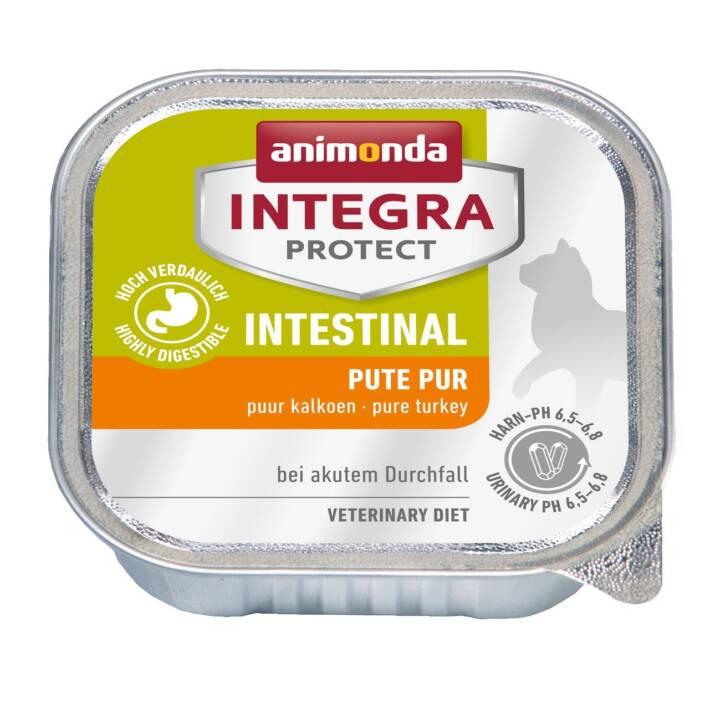 ANIMONDA Integra Protect Intestinal (Adulte, 100 g, Dindon)