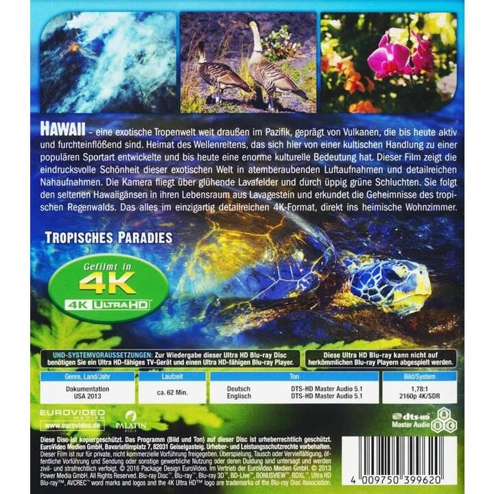 Hawaii 4K Ultra HD Blu-ray (DE, EN)