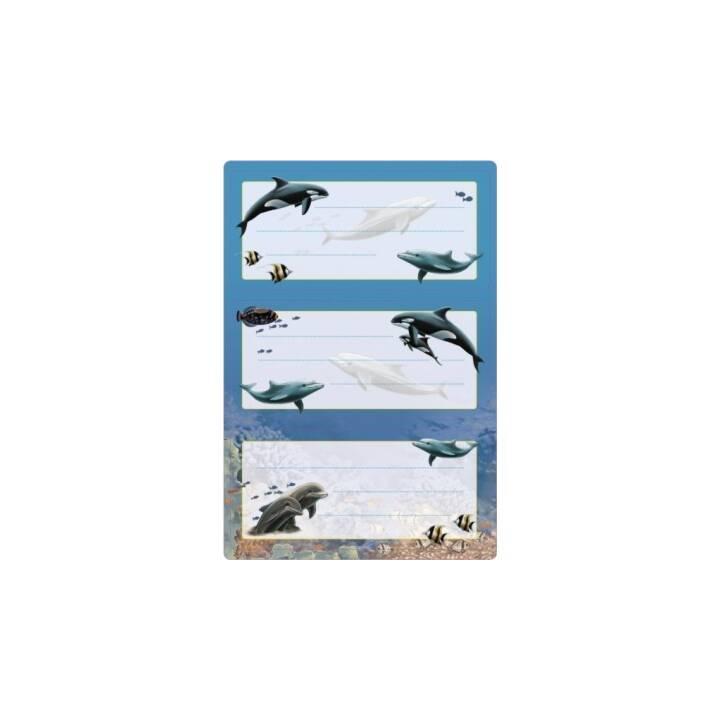 HERMA Schuletiketten Dolphin (Blau, Mehrfarbig, 6 Stück)