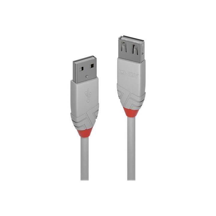 LINDY Anthra Line Câble de rallonge USB, 2 m