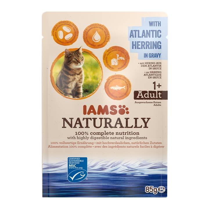 IAMS Naturally (Adulto, 85 g, Aringa)