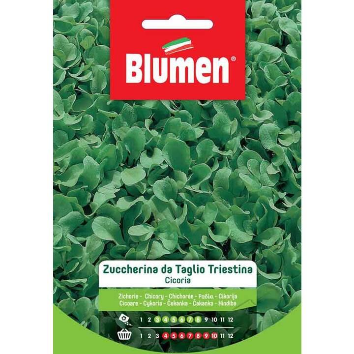 BLUMEN Cicorino Triestina da Taglio (14 g)