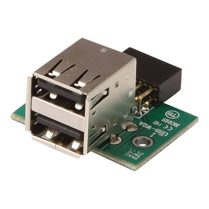 LINDY Adaptateur d'en-tête de carte mère USB 2.0 - Adaptateur USB
