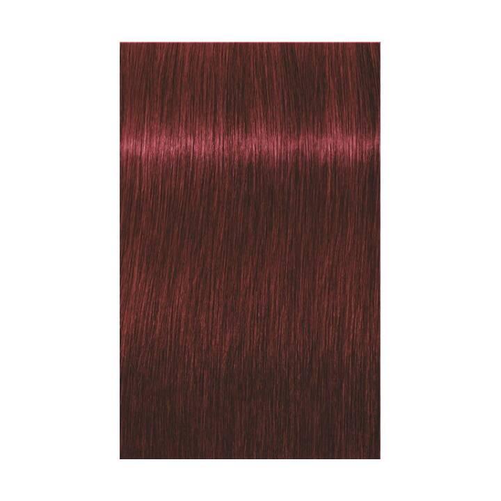 SCHWARZKOPF Igora Royal (5.88, Light Brown Red Extra)