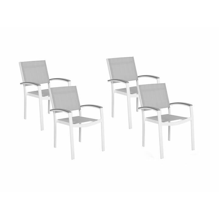 BELIANI Sedia da giardino Pereta (Gris clair, 4 pièce)