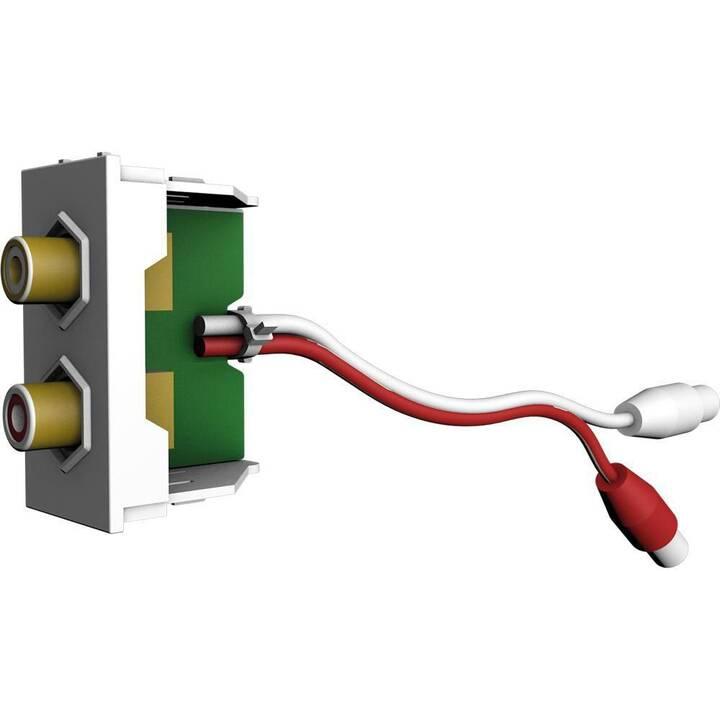 CECONET Dosen/Schalter AVM-1003 (1 Stück)