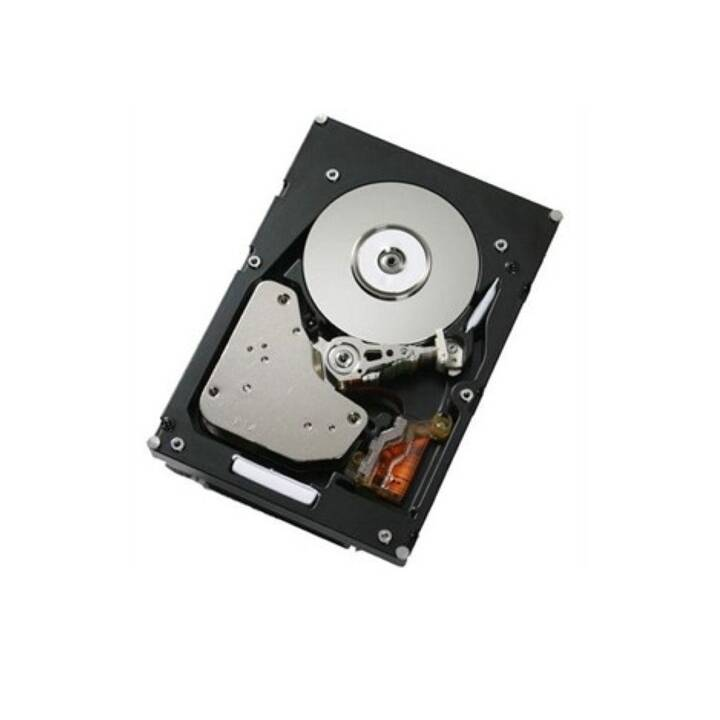 CISCO Enterprise Value (SATA, 120 GB, Schwarz)
